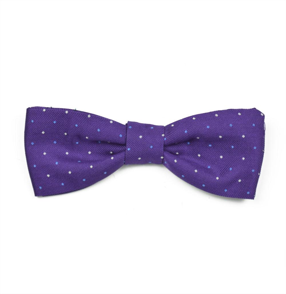 Παπιγιόν Purpledotted