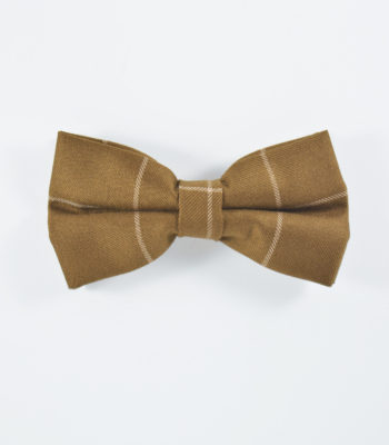 switch-brown-bowtie