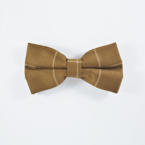 switch-brown-bowtie